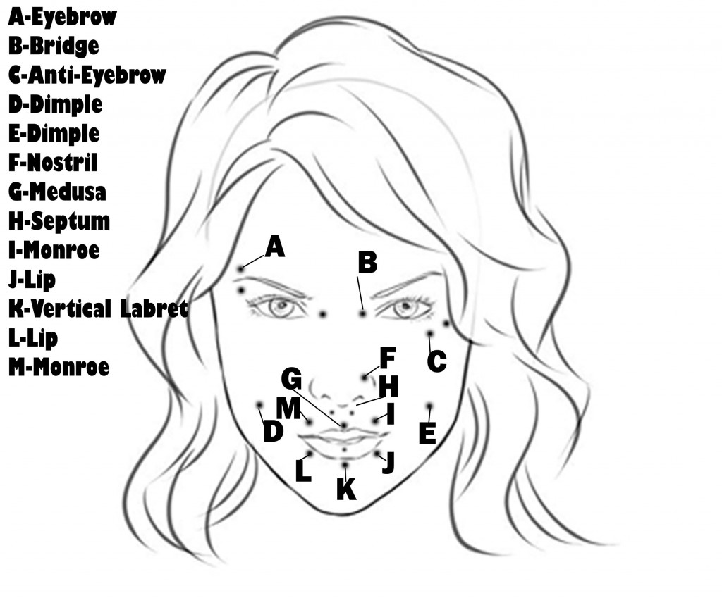 the gallery for gt body piercing types diagram